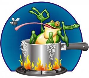 frog-pot